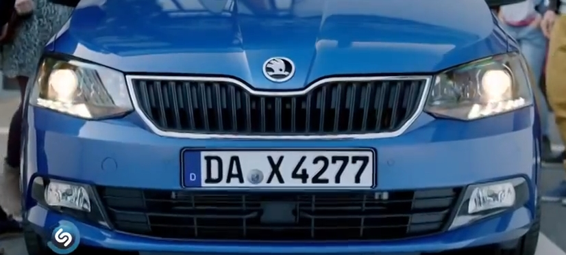 blog-skoda-fabia-german-licenseplate